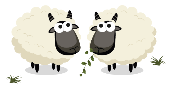 youth ministries sheep