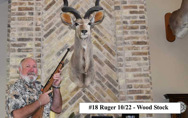 JPRuger-10-22_Wood_Stock